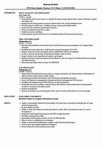 Sap Specialist Resume Samples