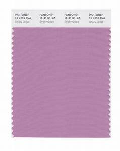 BUY Pantone Smart Swatch 16-3110 Smoky Grape