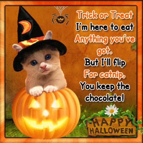 cute halloween cat poem  trick  treat ecards greeting cards