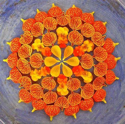 mandala klein artista usa apenas flores e plantas para criar mandalas incr 237 veis hypeness inova 231 227 o e