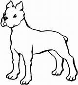 Boxer Coloring Ausmalbild Dog Kategorien Printable sketch template