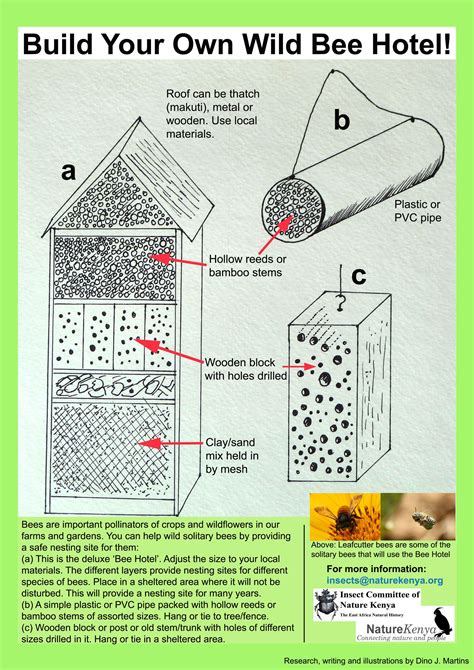 build   bee hotel national geographic society