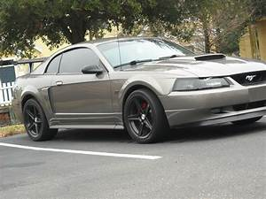 volcom4 2002 Ford Mustang Specs, Photos, Modification Info at CarDomain