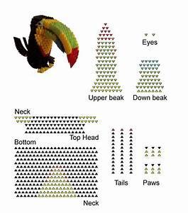 Toucan Bird  Chim Tu C U0103ng  S     Sites Google Com  Site