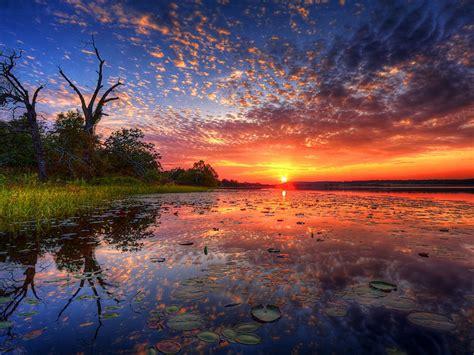 thailand lotus lake tambon chiang haeo red sunset sky