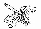 Insects Coloring Pages Print Children Simple Printable Animals Justcolor sketch template