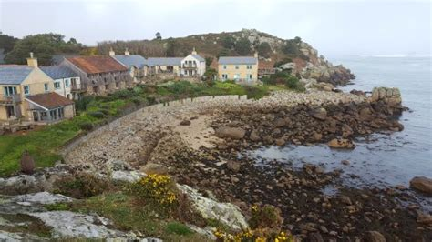 20170315093940largejpg  Picture Of Sea Garden Cottages