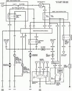 Honda Accord Ignition Wiring Diagram