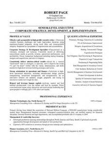 best resume for ceo 266 best resume exles images on resume exles resume writing and career