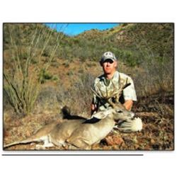 Mexican Coues Deer Hunt With Mario Rogel Hunting