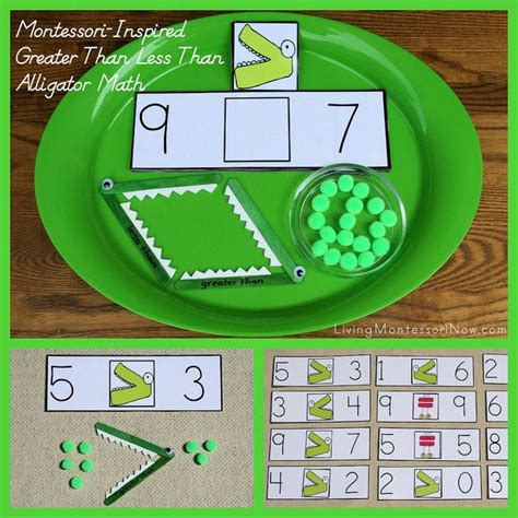 montessori inspired greater    alligator math