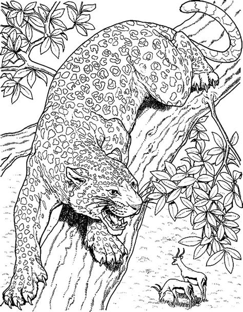 jacksonville jaguars  coloring pages
