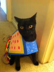 cat costumes for cats nyan cat costume for cats my disguises we costumes