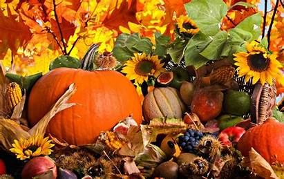 Harvest Fall Wallpapers Awesome Backgrounds Desktop Thanksgiving