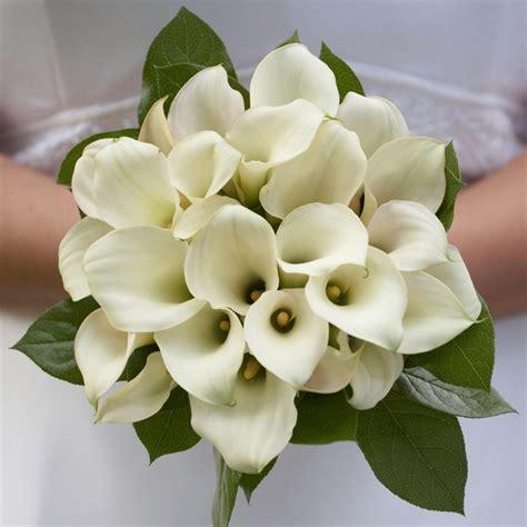 calla bouquet pictures calla lilly bridal bouquet mini calla lily bouquet calla lily wedding bouquet white calla