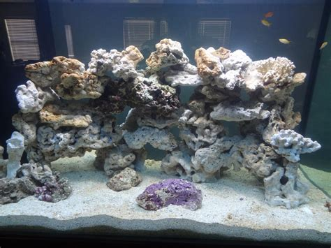 Aquascape Live Rock by How To Aquascape Live Rock