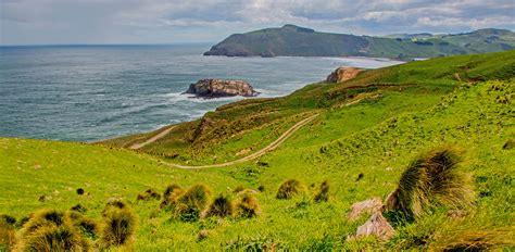 Elevation Of Tainui Dunedin New Zealand Topographic