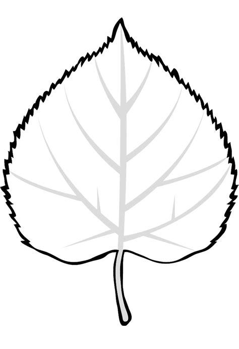 coloring page leaf linden