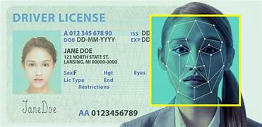 ICE, FBI reportedly scan driver's license photos for facial recognition searches…