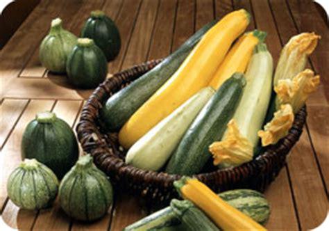 cuisine blanche et jaune la courgette tout savoir sur la courgette et ses recettes