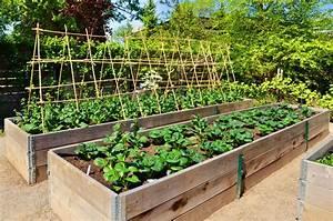 Dirty Fingernails  Raised Beds Can Make Gardening Easier