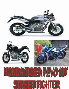 Motorcycles  Honda Tiger Revo Street Fighter