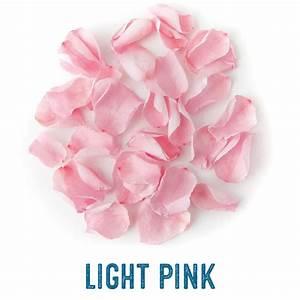 Coloured Rose Petals Real Flower Confetti Company
