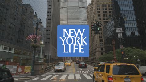 New York Life Taps Agency Trio For Integrated Campaign. Bitdefender Firewall Settings. Online Insurance School Orthopedics This Week. Easy Remote Desktop Software. Maywood Veterinary Clinic Laser Image Company. Encrypted Online Backup U S Army War College. Activities In Knoxville Tn Tiny Tots Academy. Coupon Codes For Eyebuydirect. Cash Advance Cleveland Ohio Local Pc Repairs