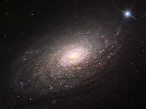 Ngc 2608 is a spiral galaxy in the cancer constellation. Galaxia Espiral Barrada 2608 : La galaxia espiral barrada ...