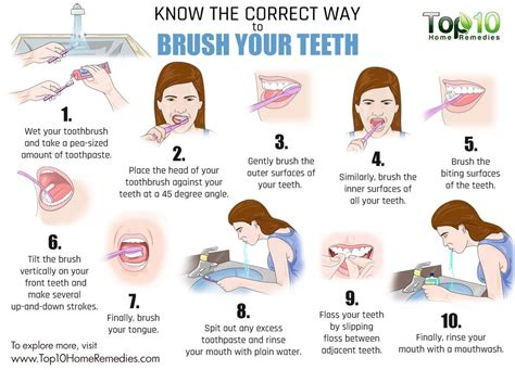 Know The Correct Way To Brush Your Teeth  Top 10 Home