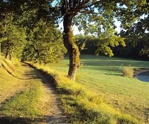 Leboncoin Tarn Et Garonne : 35 best images about paysages de tarn et garonne on pinterest trips camping and frances o 39 connor ~ Medecine-chirurgie-esthetiques.com Avis de Voitures