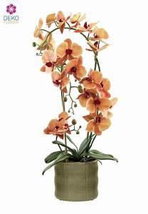 Künstliche Orchideen Im Topf : k nstliche orchidee orange 70 cm im keramik topf ~ Watch28wear.com Haus und Dekorationen