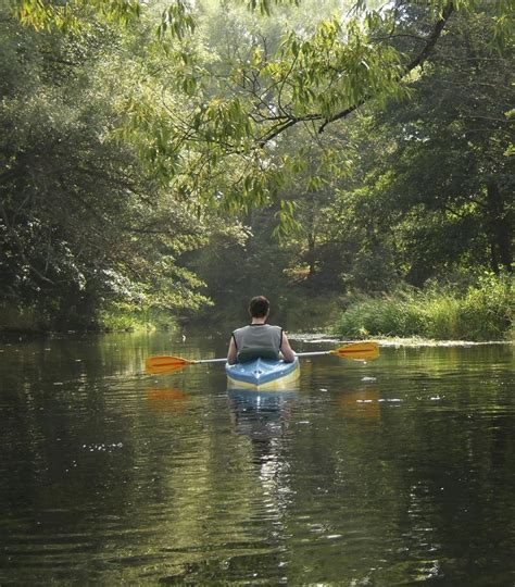 Canoes In Central Park by Canoe Green River Through Mammoth Cave National Park
