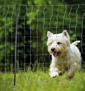 Kleiner Zaun Für Hunde : hundezaun das ist der richtige zaun f r hunde ~ Sanjose-hotels-ca.com Haus und Dekorationen