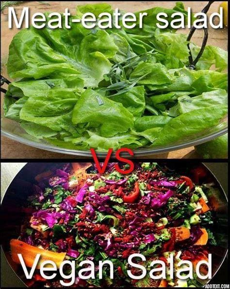 Salad Meme - 379 best images about vegan memes on pinterest joaquin phoenix vegan dating and animals