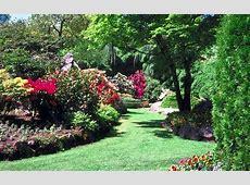 Blumen Bilder Garten