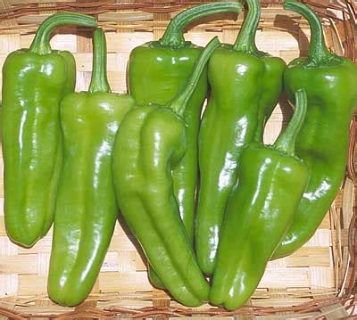 pepperoncini pepper seeds tomato growers supply company