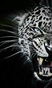 Pin by Nawin Sriwongrat on animals | Wild animal wallpaper ...