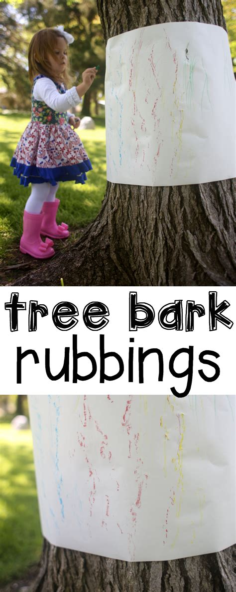 outdoor tree bark rubbings   teach  child