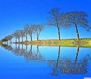 HD nature beautiful Background wallpaper