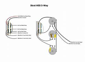 Fat Strat Hss Wiring Diagram