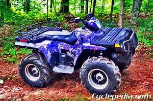 2005 Polaris Sportsman 500 Ho Parts Manual