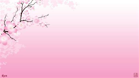 sakura cherry blossoms widescreen