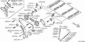 Nissan Xterra Engine Timing Chain  Mechanism  Camshaft