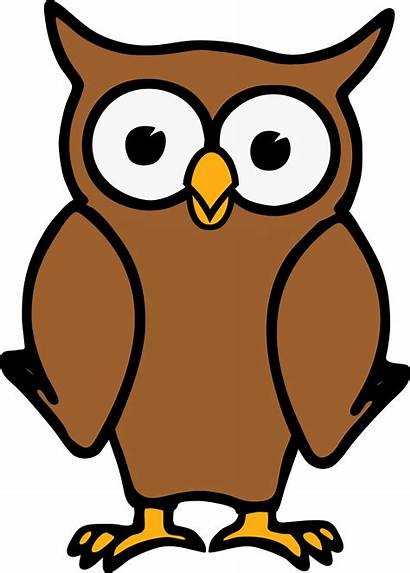 Owl Cartoon Clipart Brown Vector Clip Animated