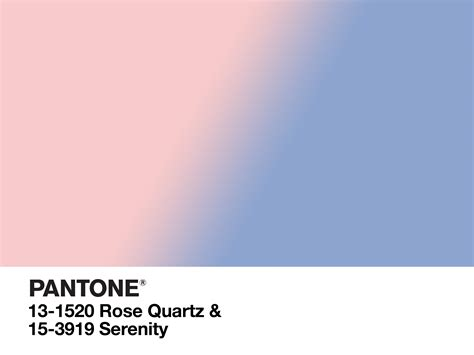 Trendfarbe 2016 Pantone by 2016 Pantone Color Of The Year Yay Or Nay Hgtv S