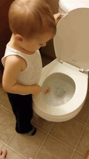 boys reaction  flushing  pet fish