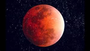 Pink Moon – WeNeedFun