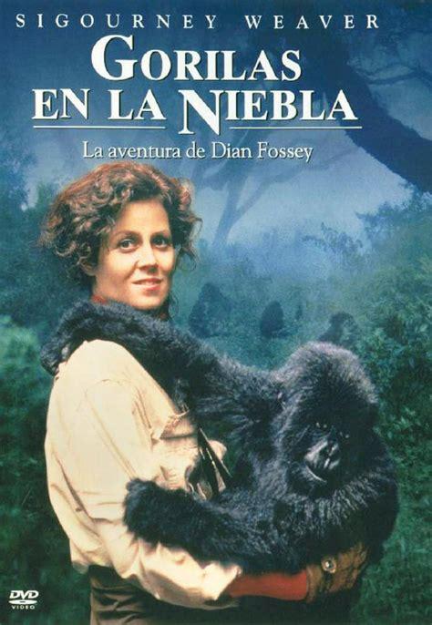 Gorilla Resumen by Secci 243 N Visual De Gorilas En La Niebla La Aventura De Dian Fossey Filmaffinity