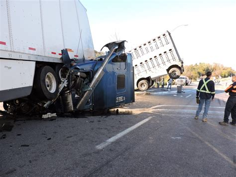 Pigs Involved In Truck Accident